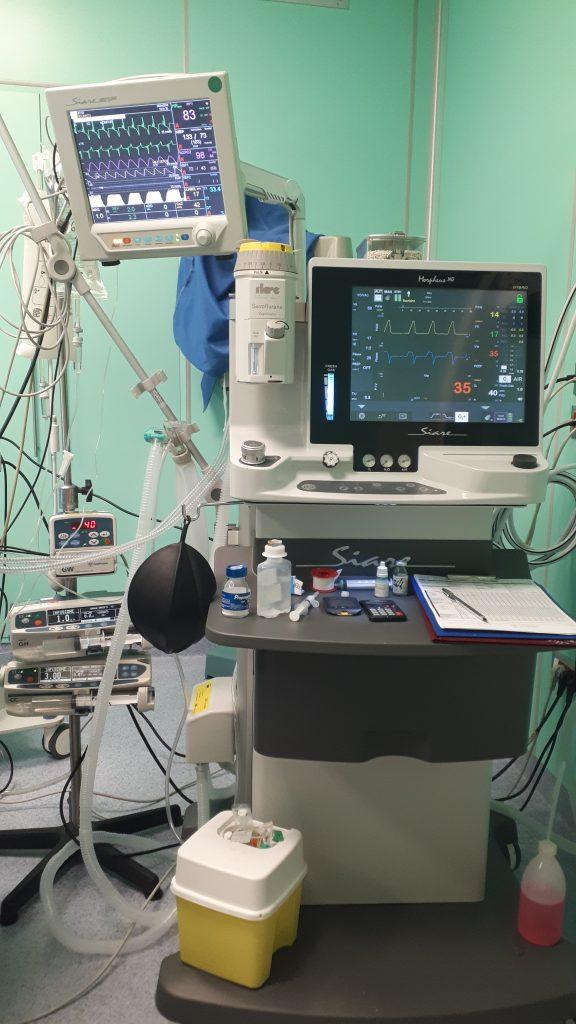 veterinario specializzato in anestesia