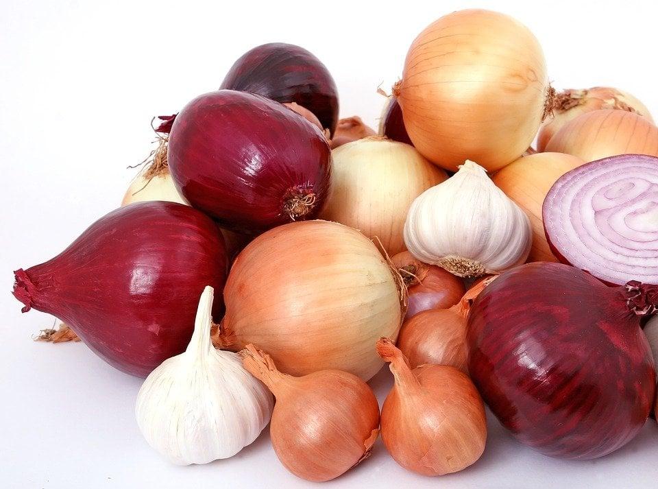 cipolle e aglio sono fra i cibi vietati
