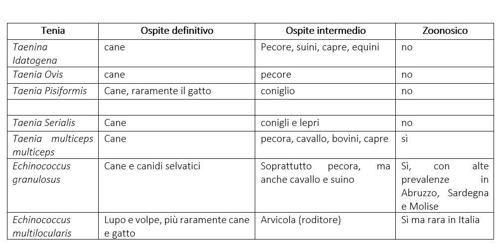 tabella riassuntiva delle tenie